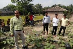 Micro Irrigation, Wheat & Sugercane Cultivation, Gardener & Dairy Entrepreneurship Training at Various Location