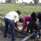 Micro Irrigation & Agriculture Training at Sunaina Samriddhi Foundation. PMKVY, ASCI, Agriculture